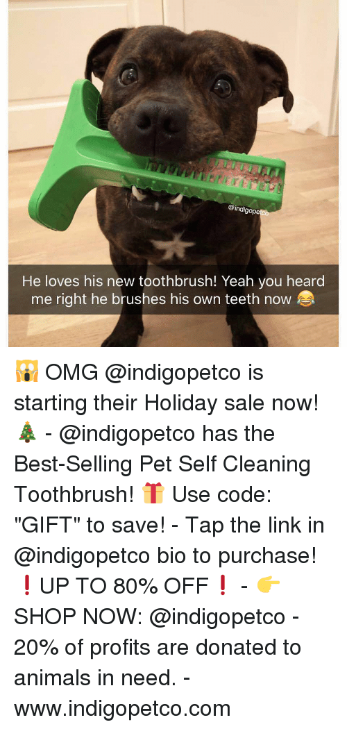 """Animals, Funny, and Memes: @indigope  He loves his new toothbrush! Yeah you heard  me right he brushes his own teeth now 🙀 OMG @indigopetco is starting their Holiday sale now! 🎄 - @indigopetco has the Best-Selling Pet Self Cleaning Toothbrush! 🎁 Use code: """"GIFT"""" to save! - Tap the link in @indigopetco bio to purchase! ❗️UP TO 80% OFF❗️ - 👉 SHOP NOW: @indigopetco - 20% of profits are donated to animals in need. - www.indigopetco.com"""