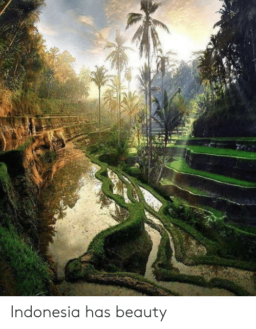 Indonesia, Beauty, and Has: Indonesia has beauty