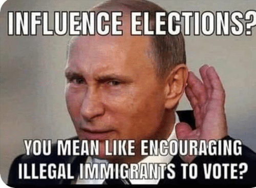 Memes, Mean, and 🤖: INFLUENCE ELECTIONS?  YOU MEAN LIKE ENGOURAGING  ILLEGALINİMIGGA NTS TO VOTE?
