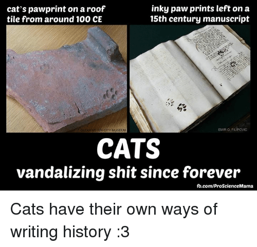 Memes, History, and Vandalize: inky paw prints left on a  cat's pawprint on aroof  15th century manuscript  tile from around 100 CE  EMIRO FILIPOWIC  STER CITY MUSEUM  CATS  vandalizing shit since forever  fb.com/ProScienceMama Cats have their own ways of writing history :3