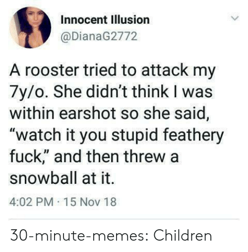 """Children, Memes, and Tumblr: Innocent Illusion  @DianaG2772  A rooster tried to attack my  7y/o. She didn't think I was  within earshot so she said,  """"watch it you stupid feathery  fuck,"""" and then threw a  snowball at it.  4:02 PM 15 Nov 18 30-minute-memes: Children"""