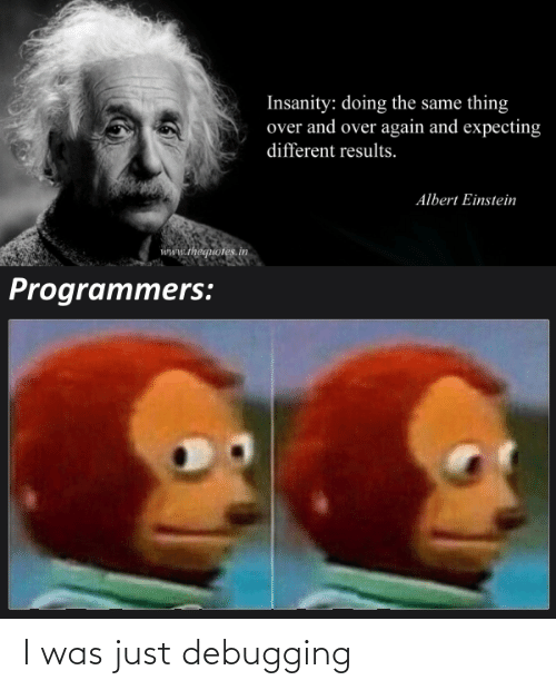Was Just: Insanity: doing the same thing  over and over again and expecting  different results.  Albert Einstein  www.thequotes.in  Programmers: I was just debugging