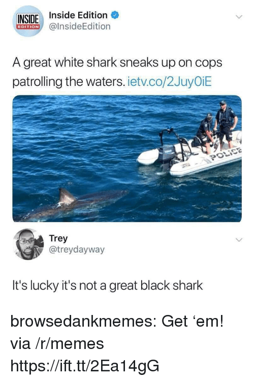 Memes, Tumblr, and Shark: INSIDE Inside Edition  @lnsideEdition  EDITION  A great white shark sneaks up on cops  patrolling the waters. ietv.co/2JuyOiE  Trey  @treydayway  It's lucky it's not a great black shark browsedankmemes:  Get 'em! via /r/memes https://ift.tt/2Ea14gG