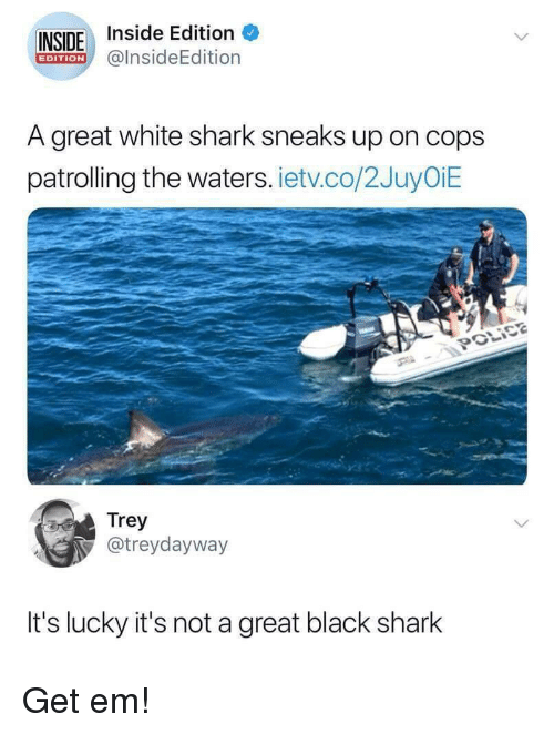 Shark, Black, and White: INSIDE Inside Edition  @lnsideEdition  EDITION  A great white shark sneaks up on cops  patrolling the waters. ietv.co/2JuyOiE  Trey  @treydayway  It's lucky it's not a great black shark Get em!