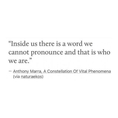 """Word, Who, and Via: """"Inside us there is a word we  cannot pronounce and that is who  we are.""""  Anthony Marra, A Constellation Of Vital Phenomena  (via naturaekos)"""