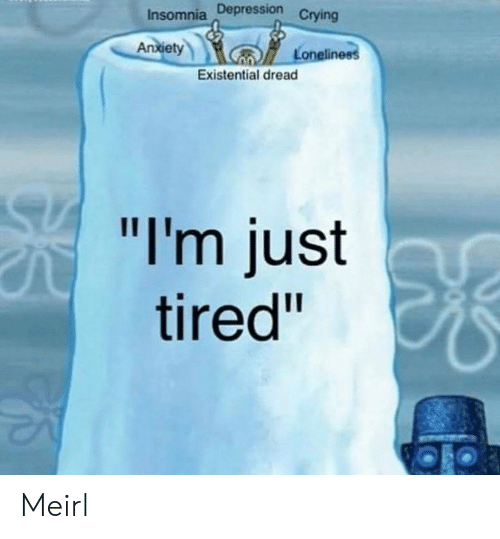 """Crying, Depression, and Insomnia: Insomnia Depression  Crying  An  xiet  Loneline  Existential dread  """"I'm just  tired"""" Meirl"""