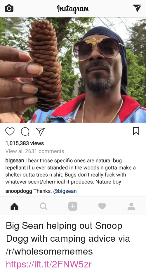 """Advice, Big Sean, and Instagram: Instagram  1,015,383 views  View all 2631 comments  bigsean I hear those specific ones are natural bug  repellant if u ever stranded in the woods n gotta makea  shelter outta trees n shit. Bugs don't really fuck with  whatever scent/chemical it produces. Nature boy  snoopdogg Thanks. @bigsean  0 <p>Big Sean helping out Snoop Dogg with camping advice via /r/wholesomememes <a href=""""https://ift.tt/2FNW5zr"""">https://ift.tt/2FNW5zr</a></p>"""