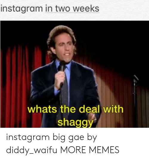 Dank, Instagram, and Memes: instagram in two weeks  whats the deal with  shaggy instagram big gae by diddy_waifu MORE MEMES
