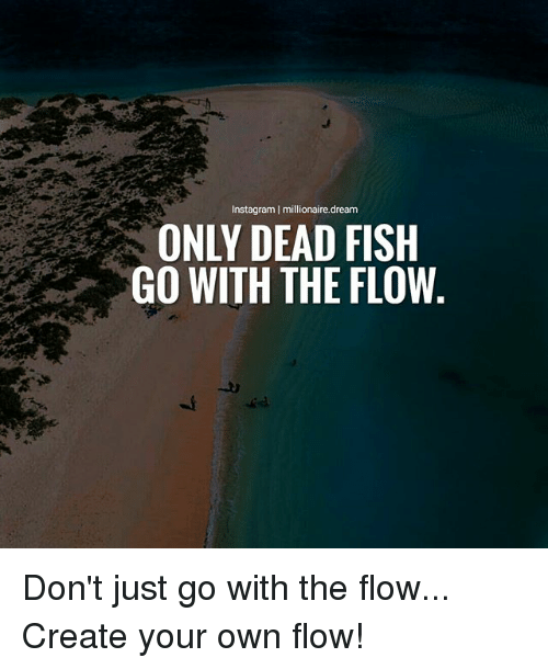 Instagram, Memes, and Fish: Instagram | millionaire.dream  ONLY DEAD FISH  GO WITH THE FLOW Don't just go with the flow... Create your own flow!