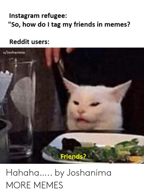 "refugee: Instagram refugee:  ""So, how do I tag my friends in memes?  Reddit users:  u/Joshanima  Friends? Hahaha….. by Joshanima MORE MEMES"