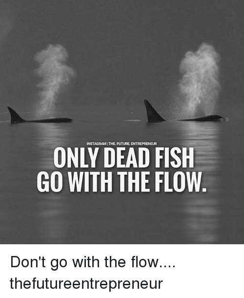 Memes, 🤖, and Dead: INSTAGRAM | THE-FUTURE. ENTREPRENEUR  ONLY DEAD FISH  GO WITH THE FLOW Don't go with the flow.... thefutureentrepreneur