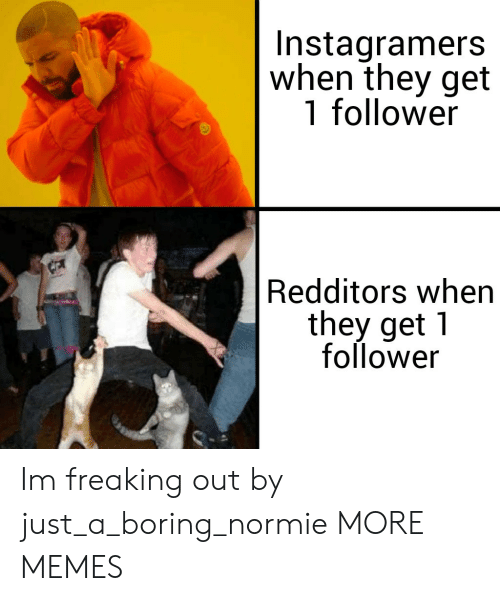 Dank, Memes, and Target: Instagramers  when they get  1 follower  Redditors when  they get 1  follower Im freaking out by just_a_boring_normie MORE MEMES
