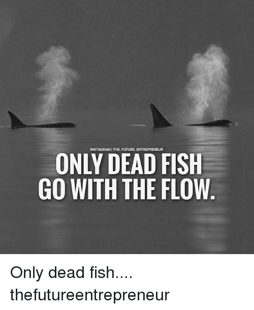 Future, Memes, and Entrepreneur: INSTAGRAMITHE FUTURE. ENTREPRENEUR  ONLY DEAD FISH  GO WITH THE FLOW Only dead fish.... thefutureentrepreneur