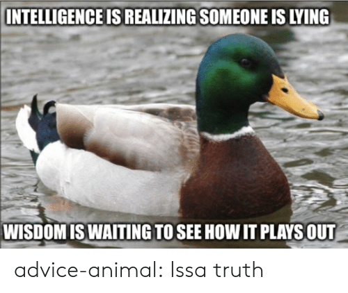 Advice, Tumblr, and Animal: INTELLIGENCE IS REALIZING SOMEONE IS LYING  WISDOMISWAITING TO SEE HOW IT PLAYSOUT advice-animal:  Issa truth