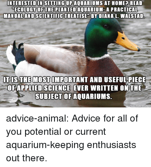 "Advice, Tumblr, and Animal: INTERESTED IN SETTING UP AQUARIUMS AT HOME? READ  ECOLOGY OFTHE PLANTED AQUARIUM: A PRACTICAL  MANUAL AND SCIENTIFIC TREATISE"" BY DIANA L. WALSTAD  IT IS THE MOST IMPORTANT AND USEFUL PIECE  OF APPLIED SCIENCE EVER WRITTEN ONTHE  SUBJECT OF AQUARI MS. advice-animal:  Advice for all of you potential or current aquarium-keeping enthusiasts out there."