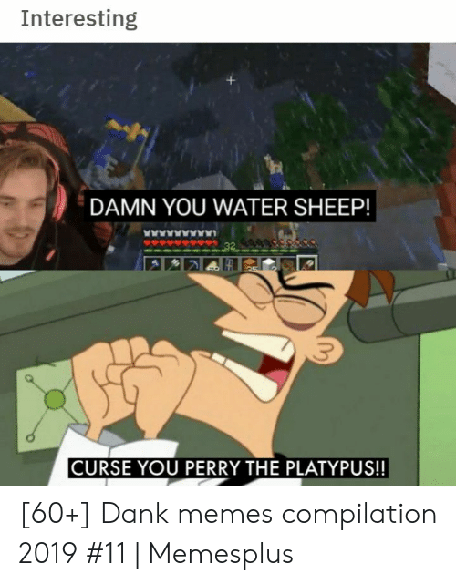 Dank, Memes, and Water: Interesting  DAMN YOU WATER SHEEP!  www  32  CURSE YOU PERRY THE PLATYPUS!! [60+] Dank memes compilation 2019 #11 | Memesplus