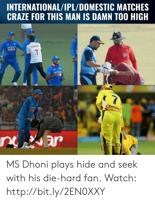 Memes, Http, and India: INTERNATIONAL/IPL/DOMESTIC MATCHES  CRAZE FOR THIS MAN IS DAMN TOO HIGH  OPP9  INDIA  THALA  Ho MS Dhoni plays hide and seek with his die-hard fan.  Watch: http://bit.ly/2EN0XXY