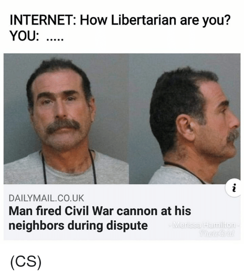 Internet, Memes, and Civil War: INTERNET: How Libertarian are you?  YOU:  DAILYMAIL.CO.UK  Man fired Civil War cannon at his  neighbors during dispute  Merissa Hamilion (CS)