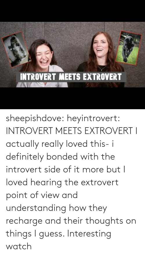 definitely: INTROVERT MEETS EXTROVERT sheepishdove: heyintrovert: INTROVERT MEETS EXTROVERT I actually really loved this- i definitely bonded with the introvert side of it more but I loved hearing the extrovert point of view and understanding how they recharge and their thoughts on things I guess. Interesting watch