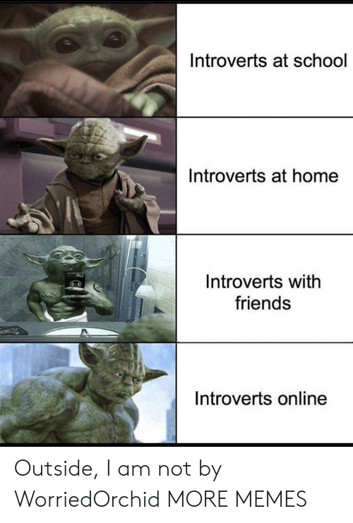 introverts: Introverts at school  Introverts at home  Introverts with  friends  Introverts online Outside, I am not by WorriedOrchid MORE MEMES