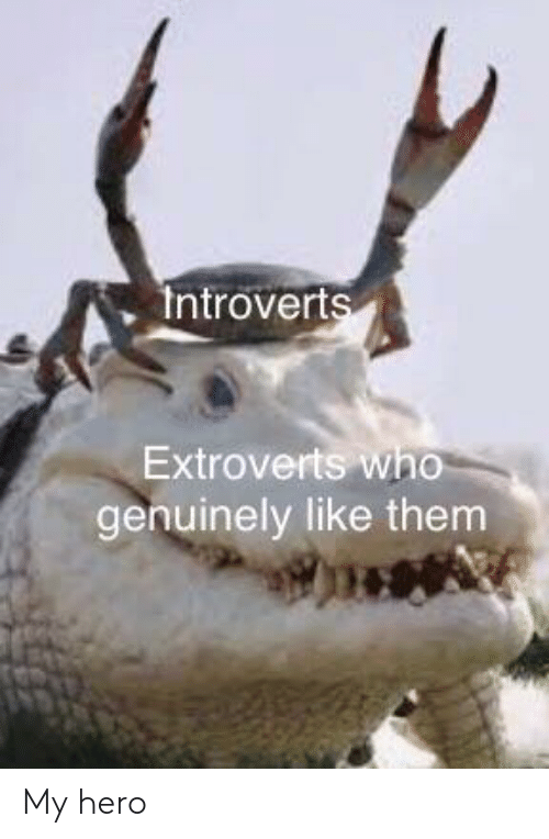 My Hero, Hero, and Who: Introverts  Extroverts who  genuinely like them My hero