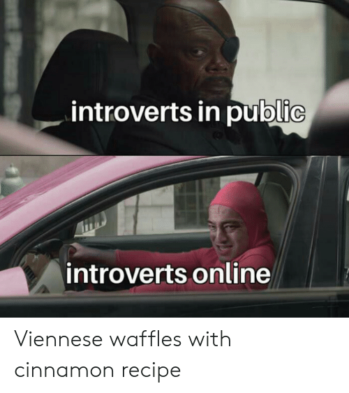 Com, Cinnamon, and Online: introverts in public  introverts online  PzS Viennese waffles with cinnamon recipe