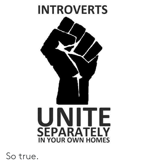 True, Own, and Your Own: INTROVERTS  UNITE  SEPARATELY  IN YOUR OWN HOMES So true.