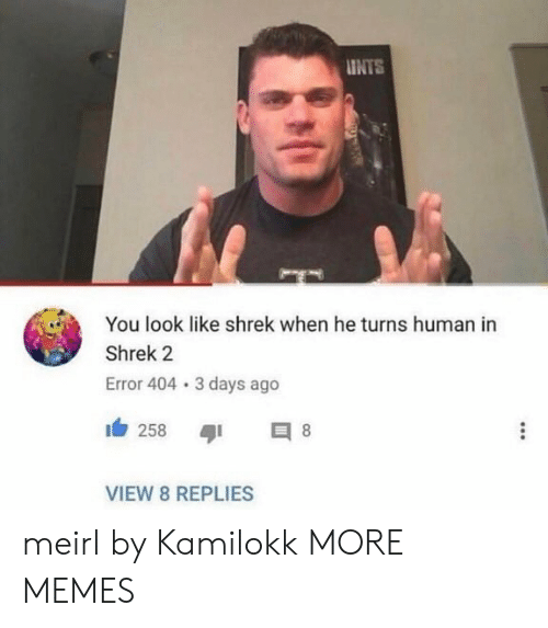 Dank, Memes, and Shrek: INTS  You look like shrek when he turns human in  Shrek 2  Error 404 3 days ago  258 8  VIEW 8 REPLIES meirl by Kamilokk MORE MEMES