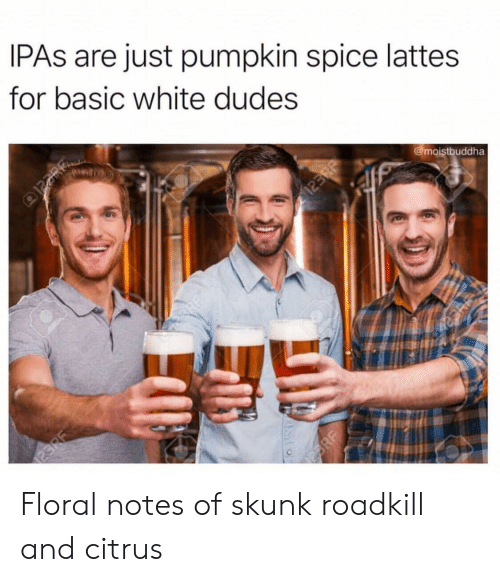 Pumpkin, White, and Roadkill: IPAs are just pumpkin spice lattes  for basic white dudes  @moistbuddha Floral notes of skunk roadkill and citrus