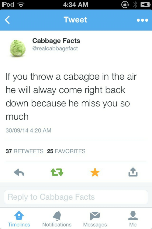 Alway: iPod  4:34 AM  Tweet  Cabbage Facts  @realcabbagefact  f you throw a cabagbe in the air  he will alway come right back  down because he miss you so  much  30/09/14 4:20 AM  37 RETWEETS 25 FAVORITES  17  Reply to Cabbage Facts  Timelines  Notifications Messages  Me
