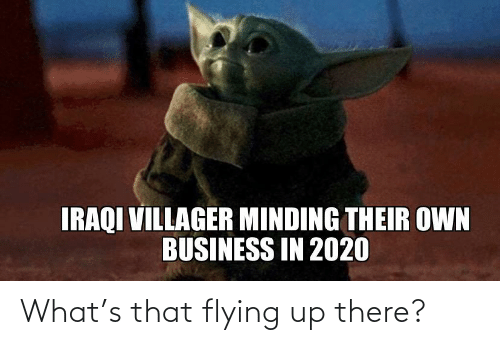 Iraqi: IRAQI VILLAGER MINDING THEIR OWN  BUSINESS IN 2020 What's that flying up there?