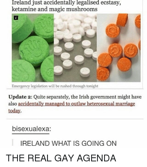 Irish, Marriage, and Ireland: Ireland just accidentally legalised ecstasy,  ketamine and magic mushrooms  Emergency legislation will be rushed through tonight  Update 2: Quite separately, the Irish government might have  also accidentally managed to outlaw heterosexual marriage  today  bisexualexa:  IRELAND WHAT IS GOING ON THE REAL GAY AGENDA