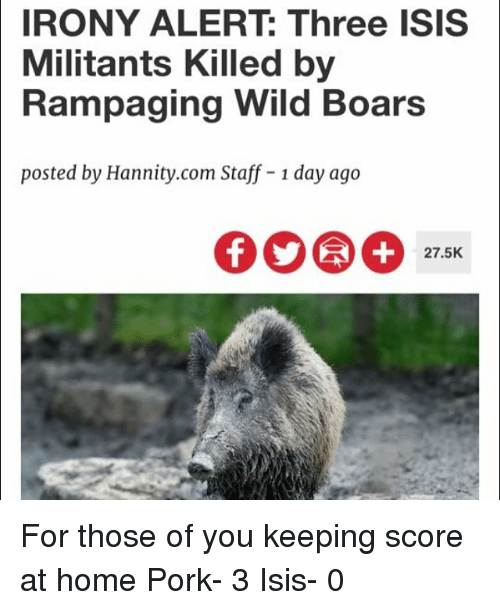 Isis, Home, and Irony: IRONY ALERT Three ISIS  Militants Killed by  Rampaging Wild Boars  posted by Hannity.com Staff 1 day ago  27.5K For those of you keeping score at home Pork- 3 Isis- 0