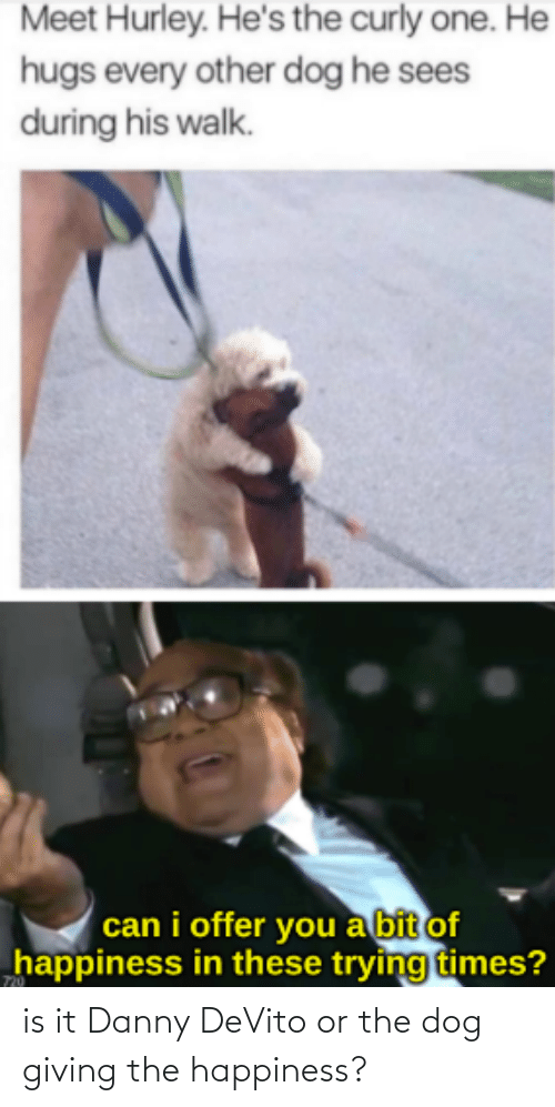 Happiness: is it Danny DeVito or the dog giving the happiness?