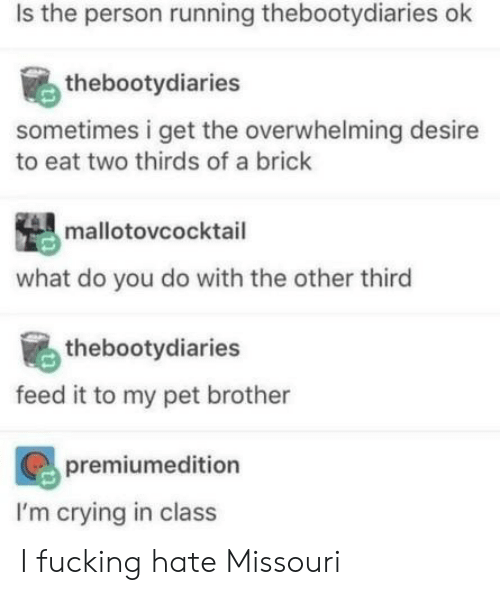desire: Is the person running thebootydiaries ok  thebootydiaries  sometimes i get the overwhelming desire  to eat two thirds of a brick  mallotovcocktail  what do you do with the other third  thebootydiaries  feed it to my pet brother  premiumedition  I'm crying in class I fucking hate Missouri