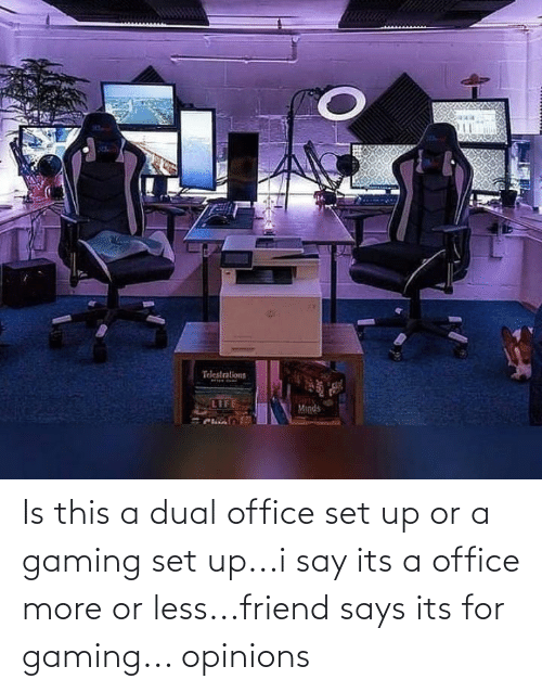 opinions: Is this a dual office set up or a gaming set up...i say its a office more or less...friend says its for gaming... opinions