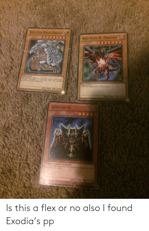 Flexing: Is this a flex or no also I found Exodia's pp
