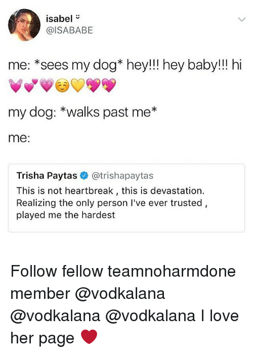 trisha paytas: isabel  @ISABABE  me: *sees my dog* hey!!! hey baby!!! hi  my dog: *walks past me*  me:  Trisha Paytas @trishapaytas  This is not heartbreak, this is devastation.  Realizing the only person I've ever trusted,  played me the hardest Follow fellow teamnoharmdone member @vodkalana @vodkalana @vodkalana I love her page ❤️