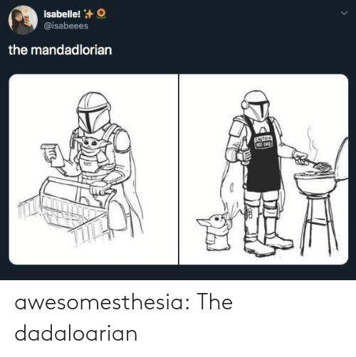 Dad, Tumblr, and Blog: isabelle! +O  @isabeees  the mandadlorian  CAUTION  HOT DAD awesomesthesia:  The dadaloarian
