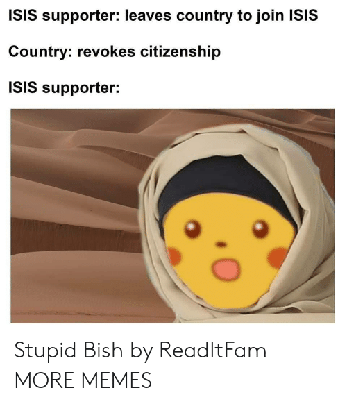 Dank, Isis, and Memes: ISIS supporter: leaves country to join ISIS  Country: revokes citizenship  ISIS supporter: Stupid Bish by ReadItFam MORE MEMES