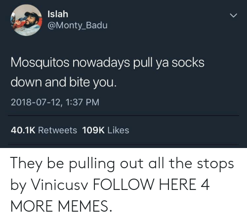 mosquitos: Islah  @Monty_Badu  Mosquitos nowadays pull ya socks  down and bite you  2018-07-12, 1:37 PM  40.1K Retweets 109K Likes They be pulling out all the stops by Vinicusv FOLLOW HERE 4 MORE MEMES.