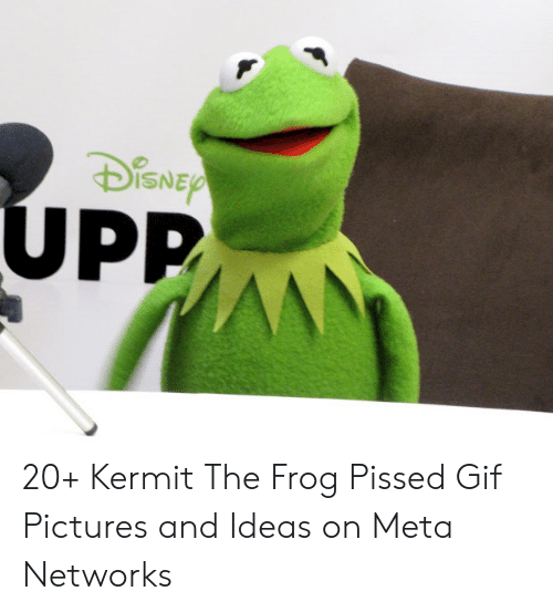 Gif Pictures: ISNE  Pp 20+ Kermit The Frog Pissed Gif Pictures and Ideas on Meta Networks
