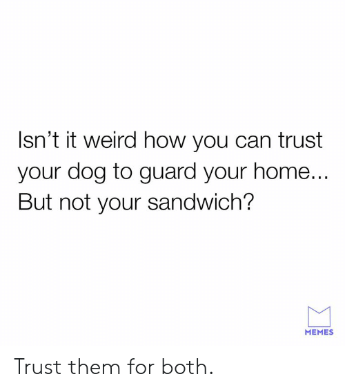 Dank, Memes, and Weird: Isn't it weird how you can trust  your dog to guard your home...  But not your sandwich?  MEMES Trust them for both.