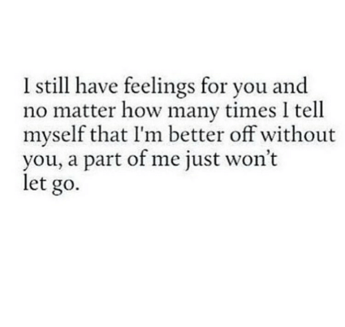 How Many Times, How, and You: Istill have feelings for you and  no matter how many times I tell  myself that I'm better off without  you, a part of me just won't  let go.