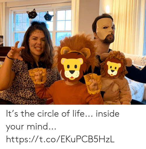 your mind: It's the circle of life... inside your mind... https://t.co/EKuPCB5HzL