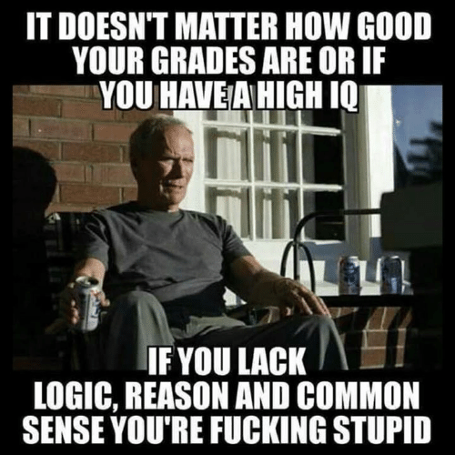 Fucking, Logic, and Common: IT DOESN'T MATTER HOW GOOD  YOUR GRADES ARE OR IF  YOU HAVE AHIGH IQ  IF YOU LACK  LOGIC, REASON AND COMMON  SENSE YOU'RE FUCKING STUPID