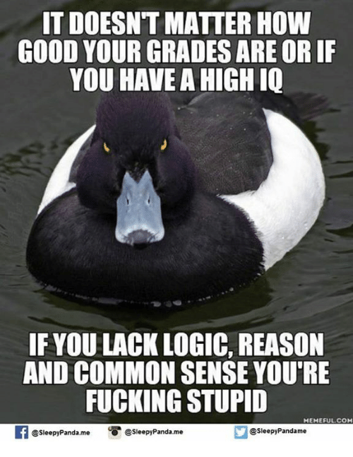 Stupid Memes: IT DOESNT MATTER HOW  GOOD YOUR GRADES ARE OR IF  YOU HAVE A HIGH IQ  IF YOU LACK LOGIC, REASON  AND COMMON SENSE YOU'RE  FUCKING STUPID  MEME FULCOM  @Sleepy Pandame  @sleepy Panda,me  Sleepy Panda me