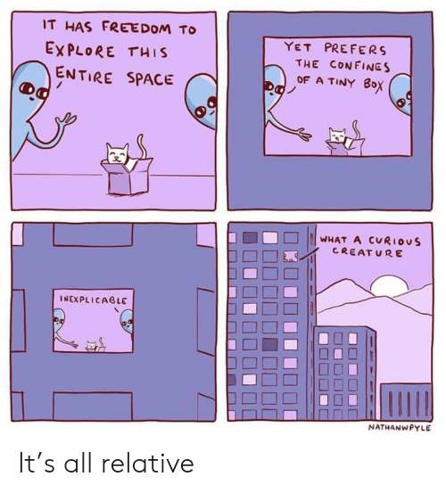 Space, Freedom, and Tiny: IT HAS FREEDOM TO  EXPLORE THIS  YET PREFERS  THE CON FINES  OF A TINY 8oX  ENTIRE SPACE  □□□ ||||WHAT A CURIOUS  CREAT URE  INEXPLICAGLE  ㄇㄇㄧˊ  NATHANWPYLE It's all relative