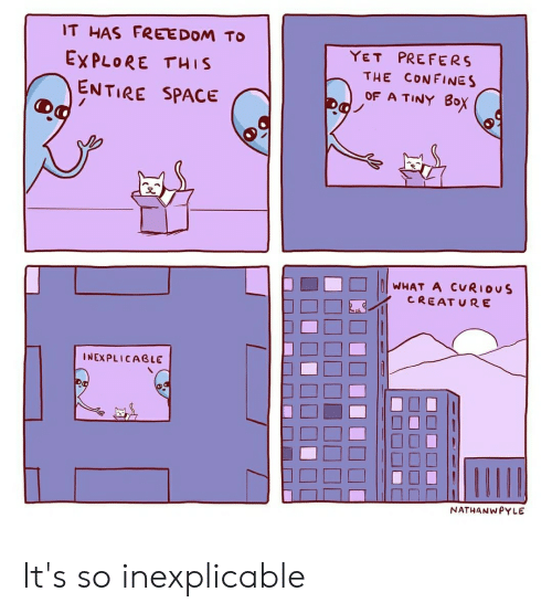 Space, Freedom, and Im 14 & This Is Deep: IT HAS FREEDOM TO  PREFERS  YET  EXPLORE THIS  THE CONFINES  OF A TINY BOx  ENTIRE SPACE  WHAT A CURIOUS  CREAT URE  INEXPLICABLE  NATHANWPYLE It's so inexplicable