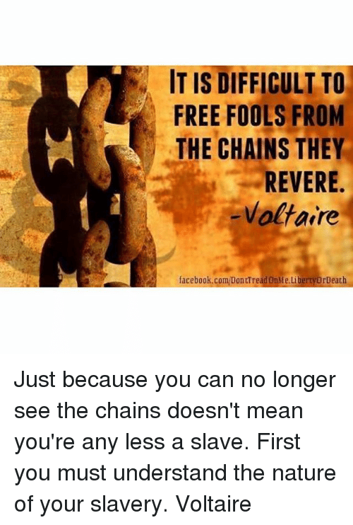 It Is Difficult To Free Fools From The Chains They Revere Voltaire Facebookcomdonttread Onmelibertyordeath Just Because You Can No Longer See The Chains Doesn T Mean You Re Any Less A Slave First You